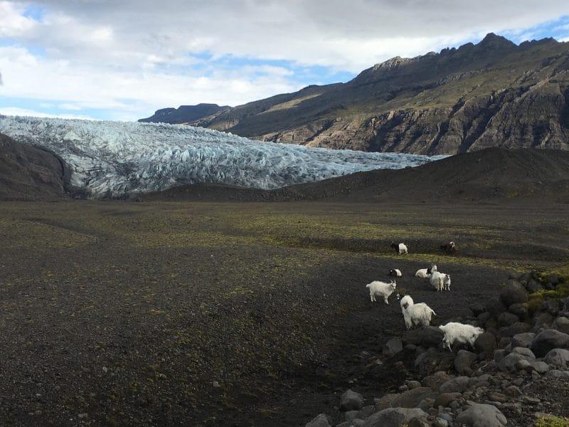 Horaires et tarifs du glacier Vatnajökull