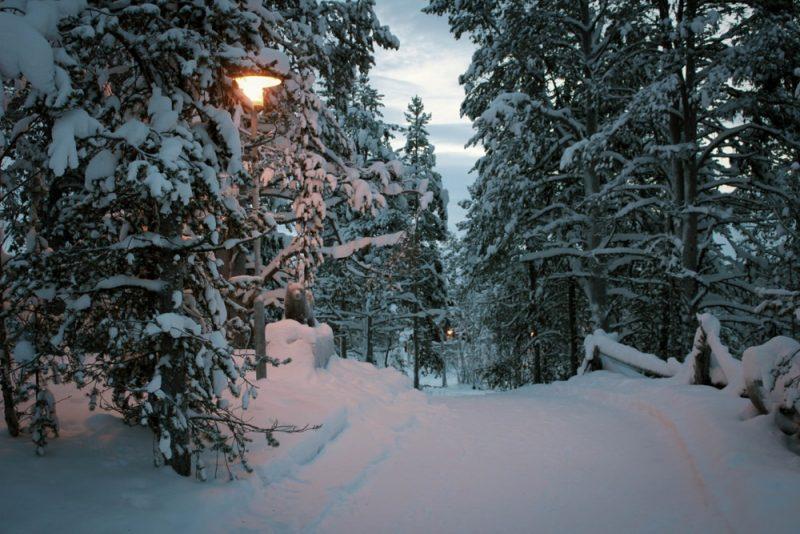Parc national de Pallas-Yllästunturi, Finlande