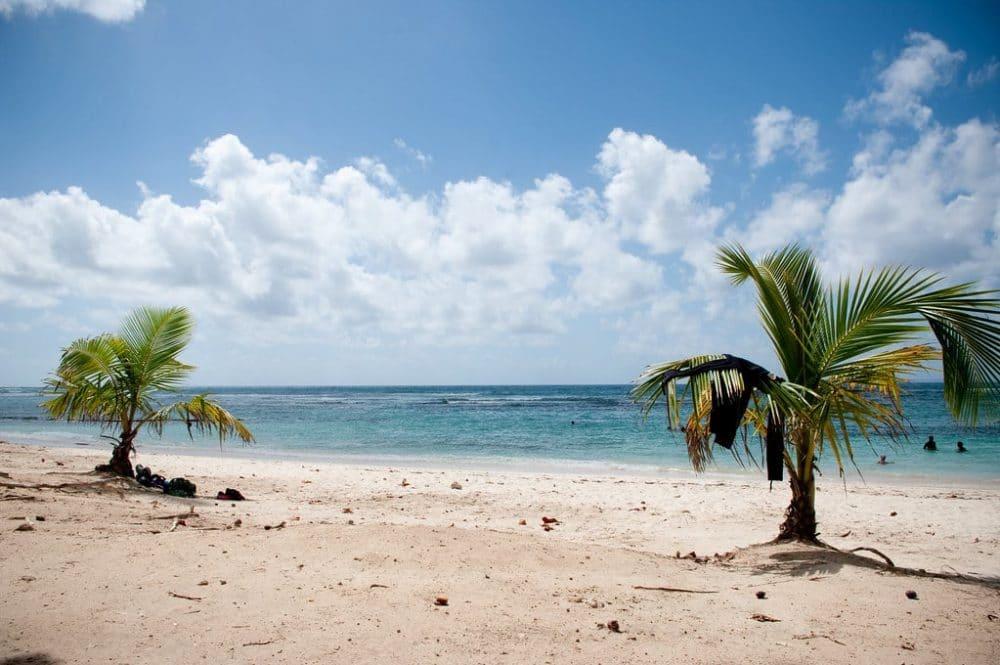 Plage des Raisins Clairs, Guadeloupe
