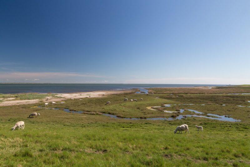 L'île de Rømø, Danemark