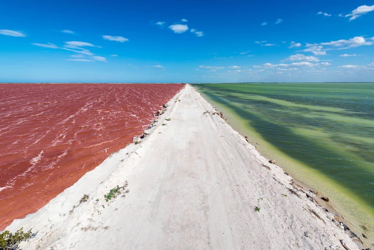 Le lagon rose du Yucatan