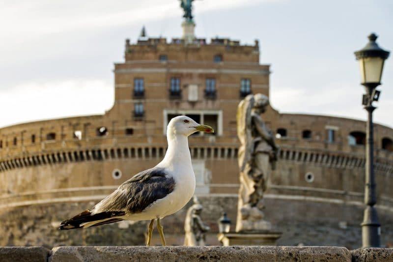 Horaires et tarifs du Château Saint-Ange à Rome