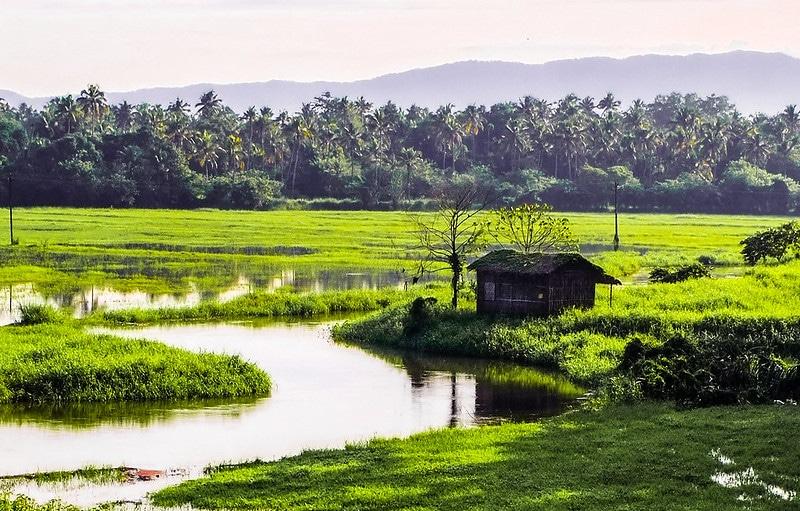 Canaux de Kerala, Inde