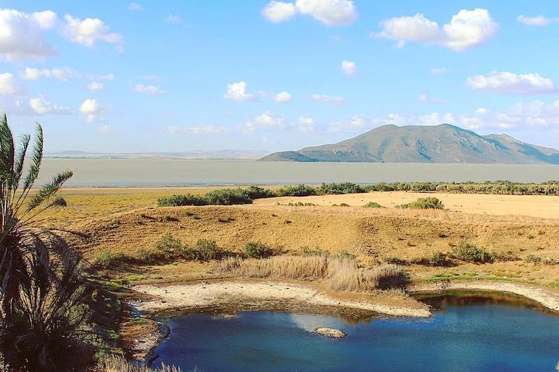 Parc National d'Ichkeul