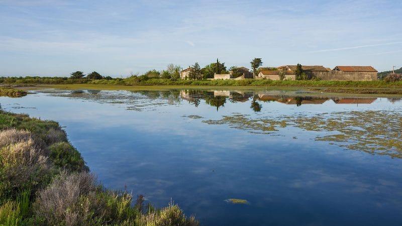 Réserve naturelle du Bagnas, Agde
