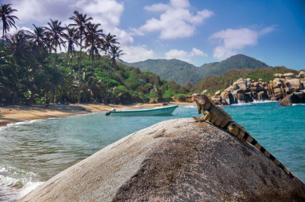 Les 8 choses incontournables à faire sur la côte Caraïbe en Colombie