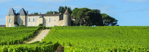 Où faire une dégustation de vin autour de Bordeaux ?