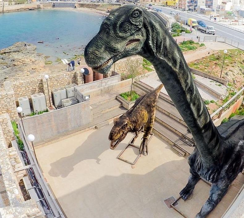 Musée d'histoire naturelle de Crète, Héraklion