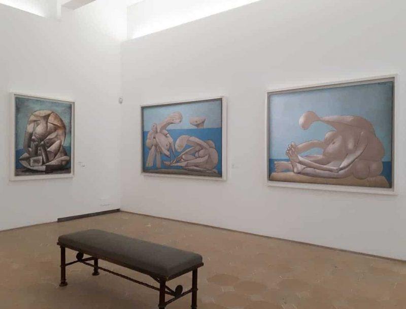 Que voir et faire au Musée Picasso à Paris ?