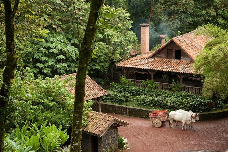 Jardins des chutes de la Paz, Costa Rica