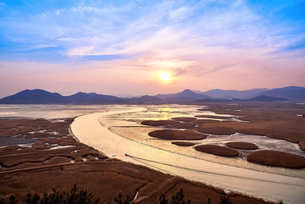 Suncheon Bay, Corée du Sud