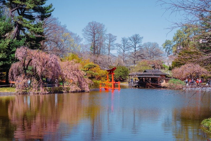 Brooklyn Botanic Garden, New-York