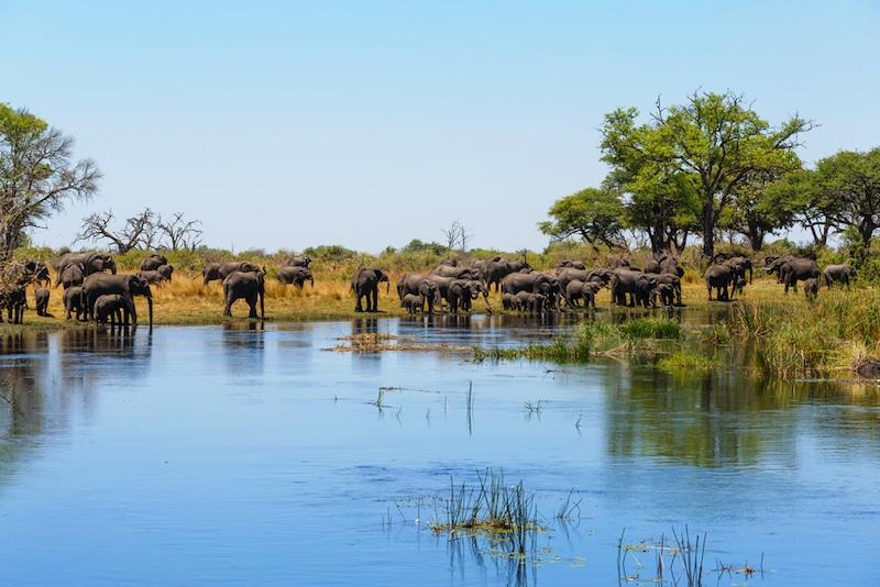 Bande de Caprivi, Namibie