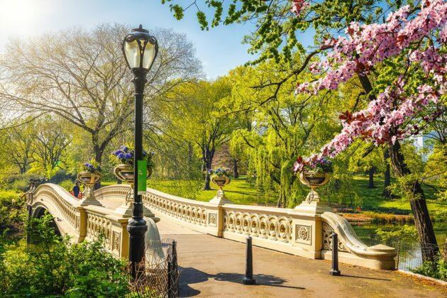 Les 16 activités et visites gratuites à faire à New York