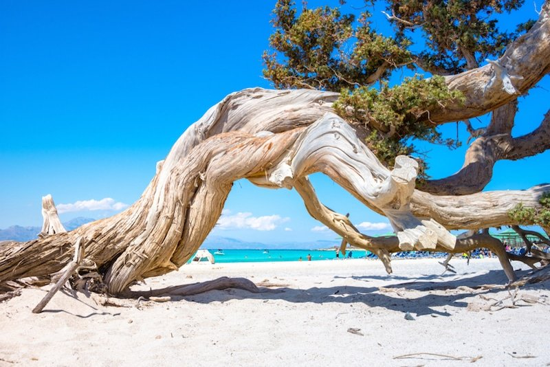 Chrissi Beach, Crète