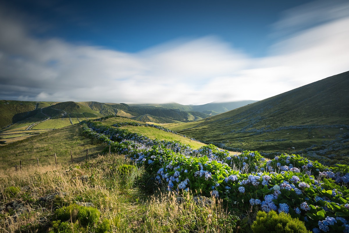 Îles aux Fleurs, Açores