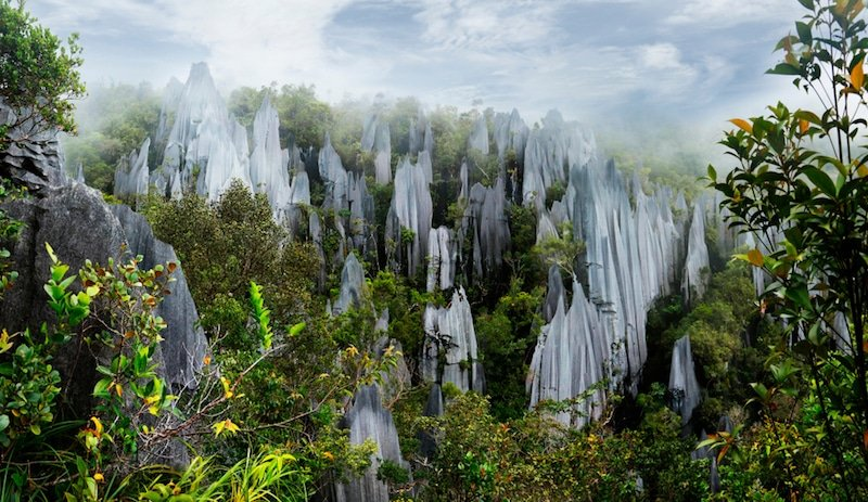 Gunung Mulu, Malaisie
