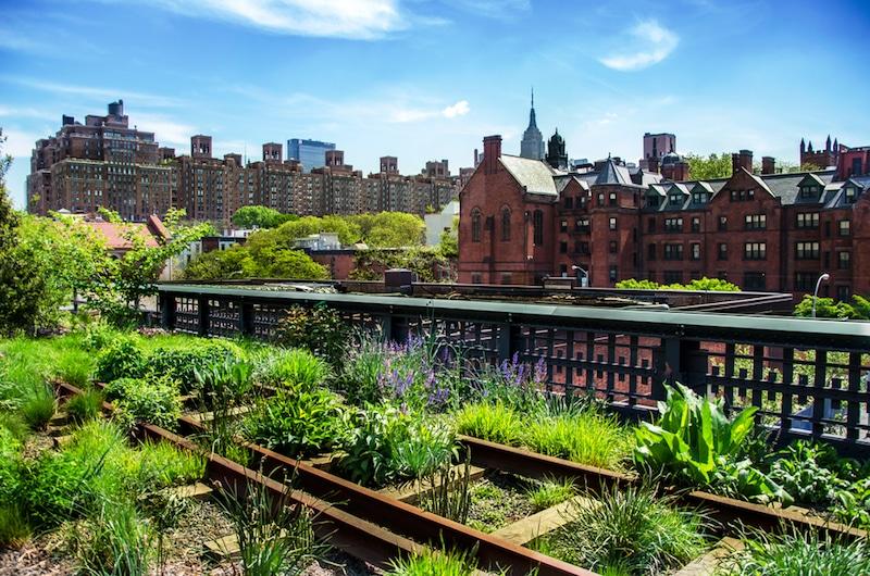 High Line, New-York
