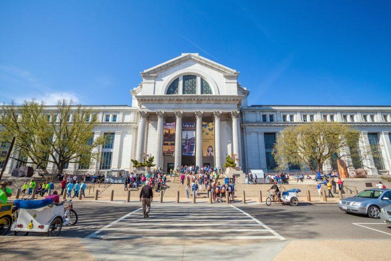 Horaires et tarifs du Musée de l'Histoire Naturelle à Washington