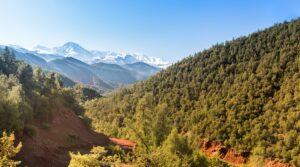 Vallée d'Ourika, Maroc