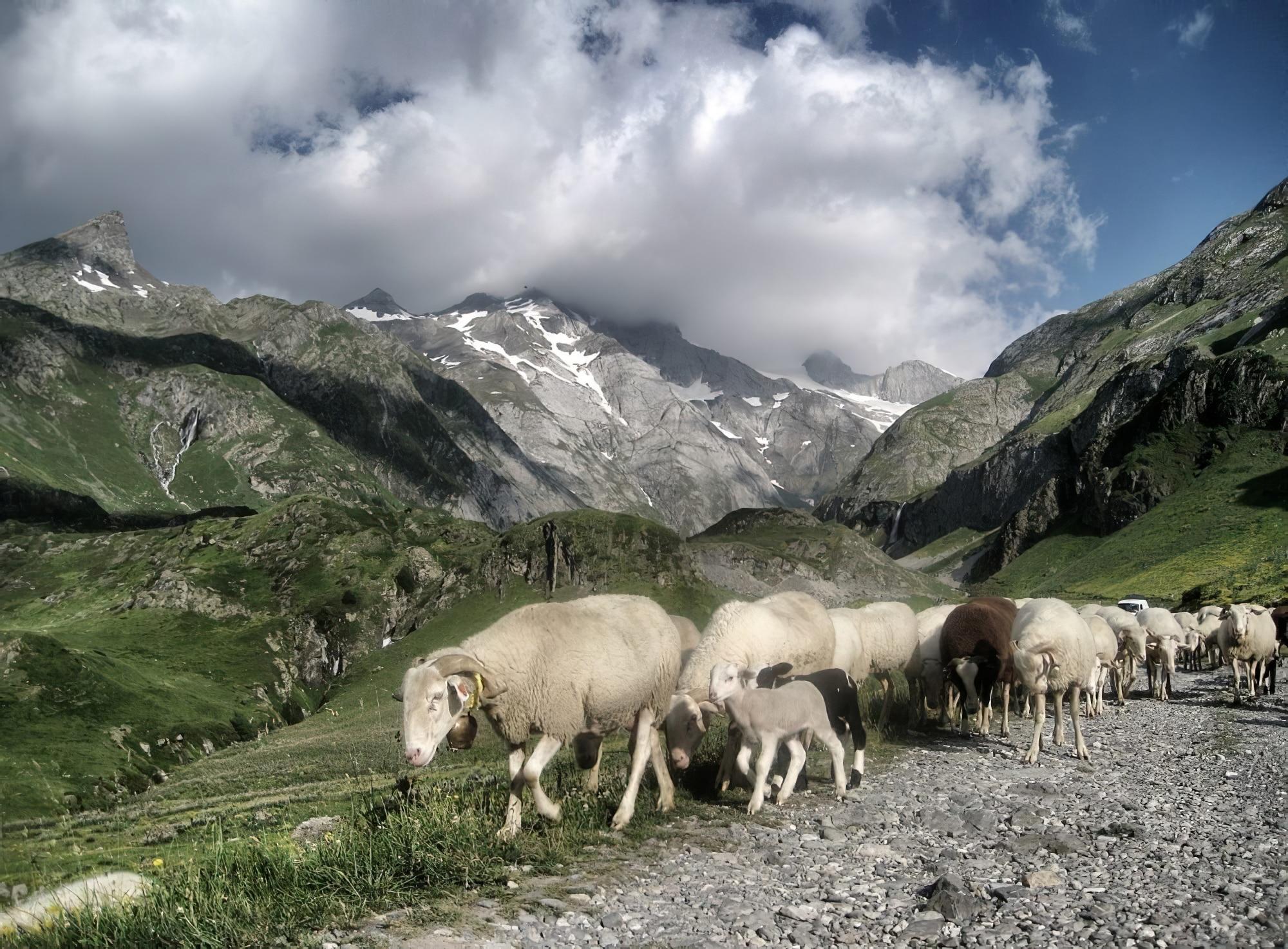 Visiter le Parc National des Pyrénées