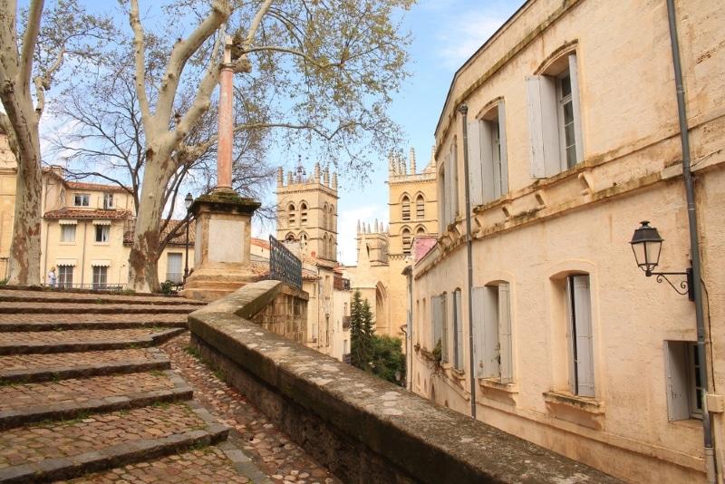 Montpellier - Centre historique Ecusson