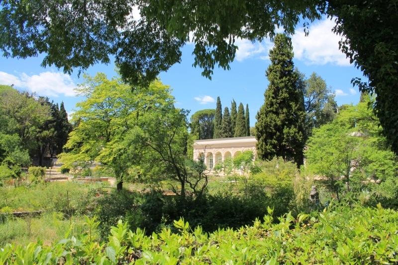Montpellier - Jardin des plantes