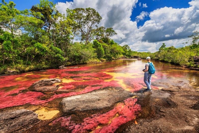 Parcs nationaux naturels en Colombie riviere coloree Caño Cristales