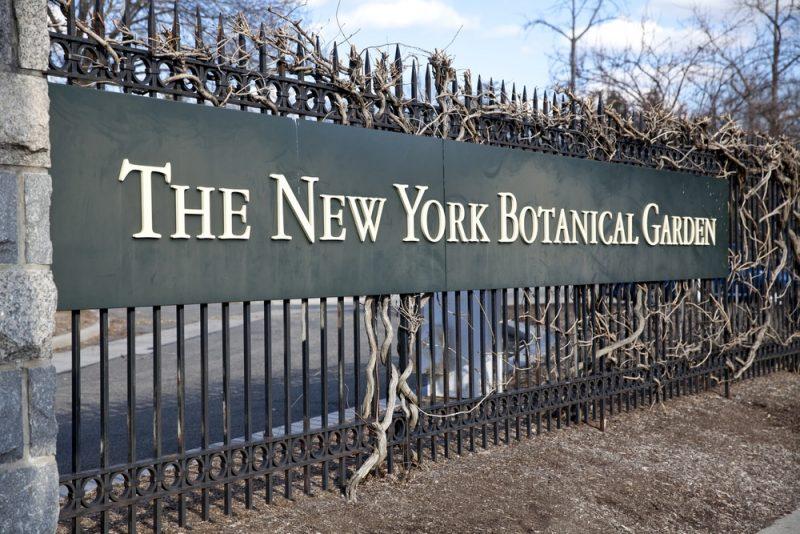 Horaires et tarifs du jardin botanique de New York