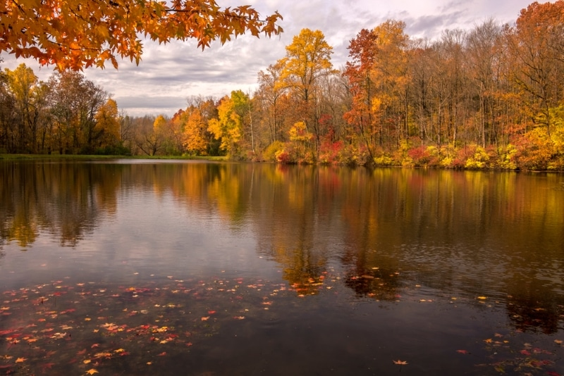 Indianapolis, Eagle Creek park lac en automne