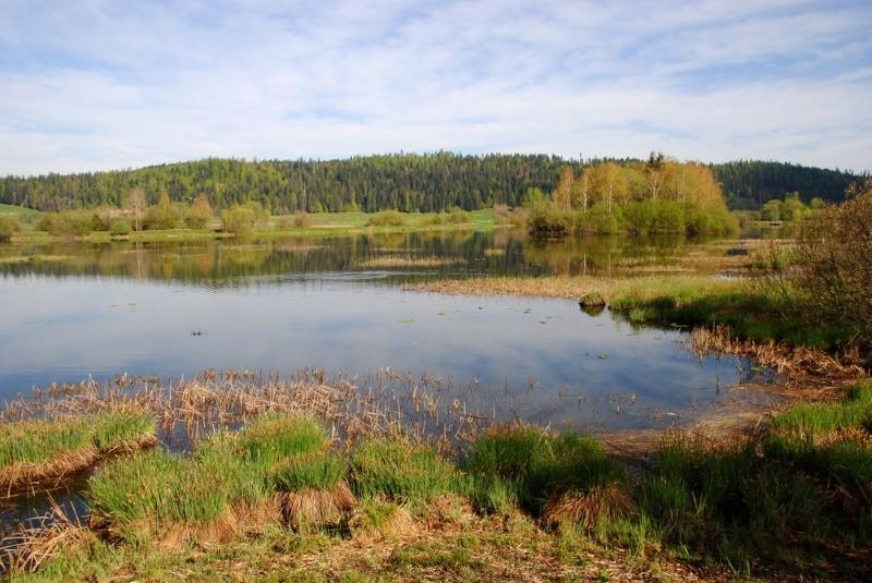 jura lac de remoray