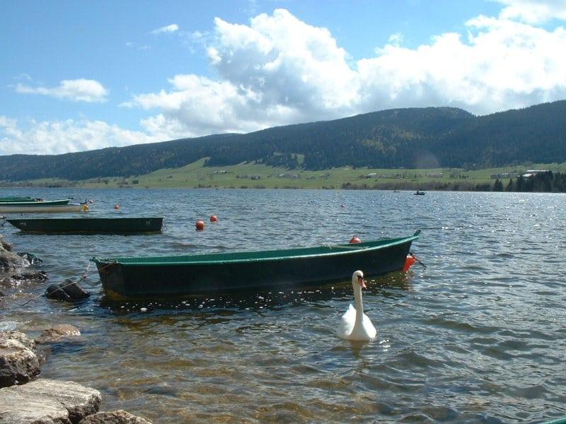 Kayak dans le Jura au Lac des Rousses