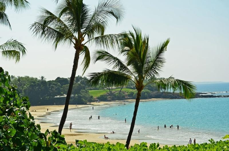 Mauna Kea beach palmiers hawaii