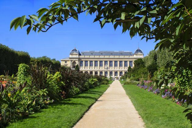 Visiter le Muséum national d'Histoire naturelle à Paris : billets, tarifs, horaires