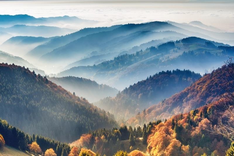 Parc national de Forêt noire en Allemagne