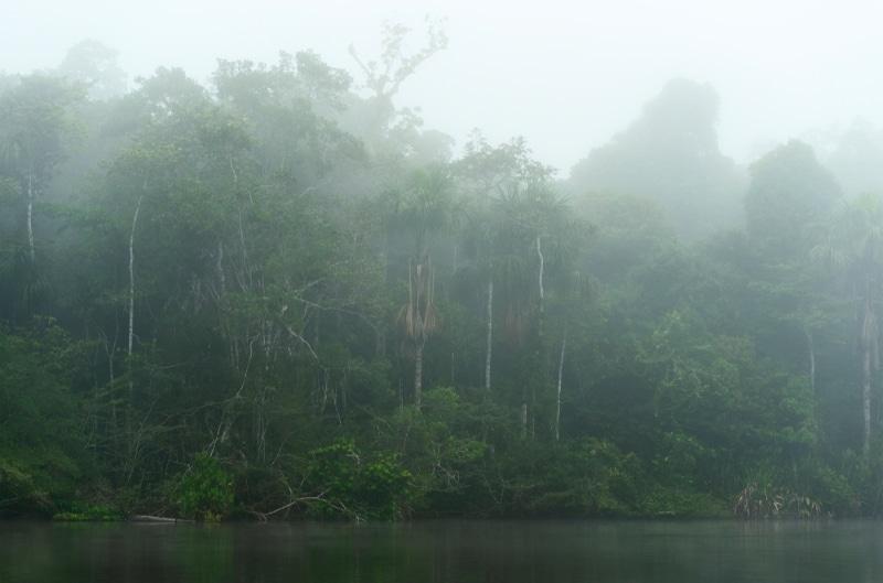 Parc national amazonien de Guyane