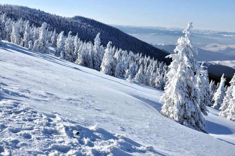 ski Pyrénées à Font Romeu montagnes et sapins