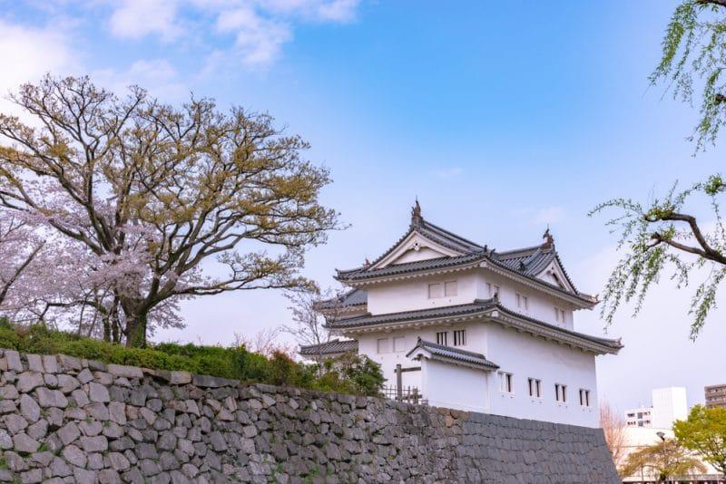 Château de Sunpu, Shizuoka