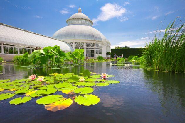Visiter le jardin botanique de New York : billets, tarifs, horaires