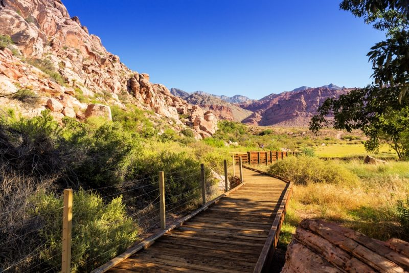 Que voir et faire au red rock canyon