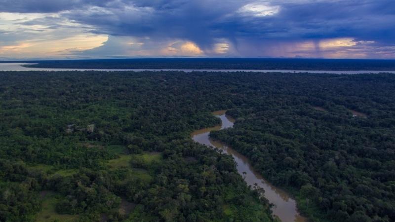 amacaycu parc naturel national colombie