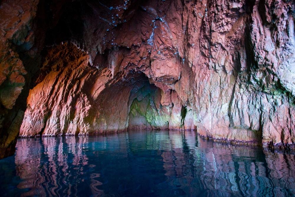 Campanina en Corse grotte