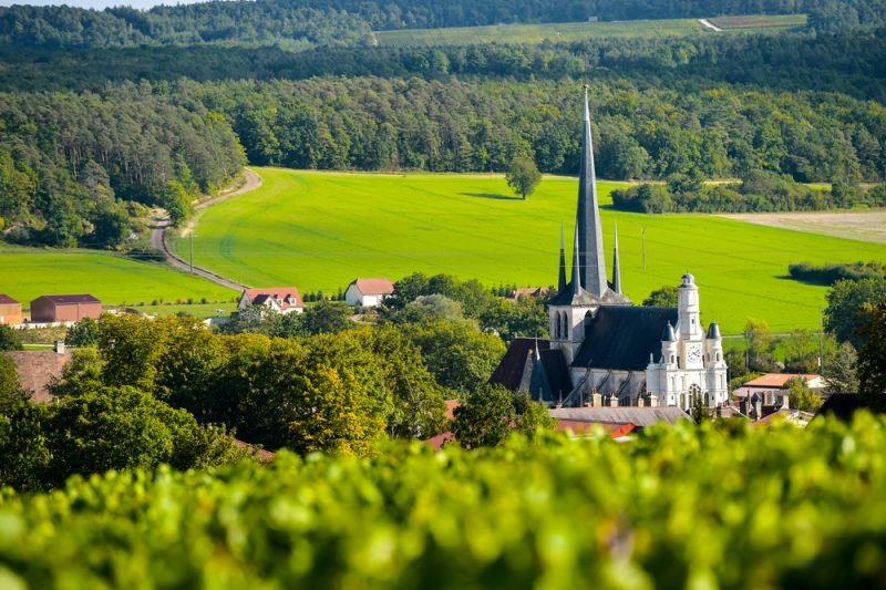 Vignoble en Champagne-Ardenne