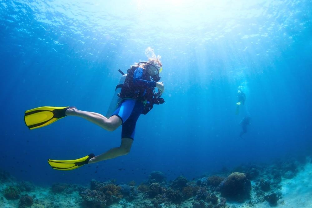 Faire de la plongée sous marine a marseille