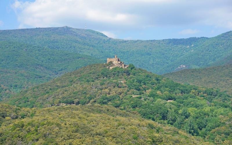 Faire du parapente au-dessus des forêts et dans les montagnes des Pyrénées