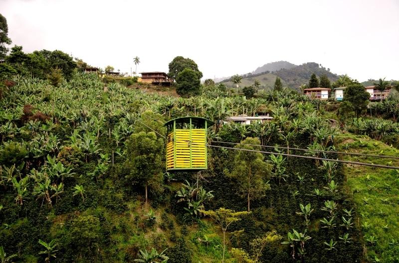 Finca de cafe Colombie