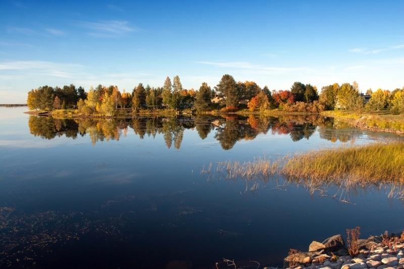 foret wild taiga finlande lac