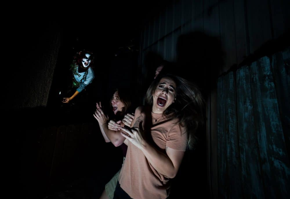 Hwl o Scream, Halloween