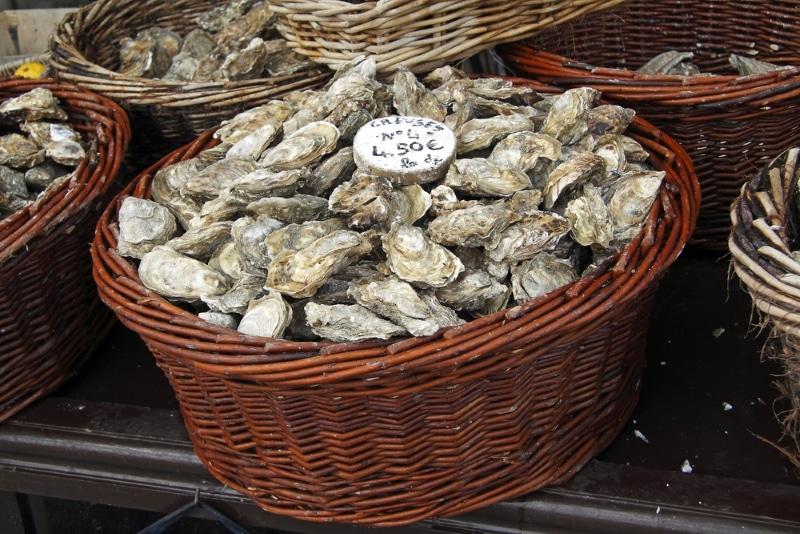 huitres et marchés de belle ile en mer