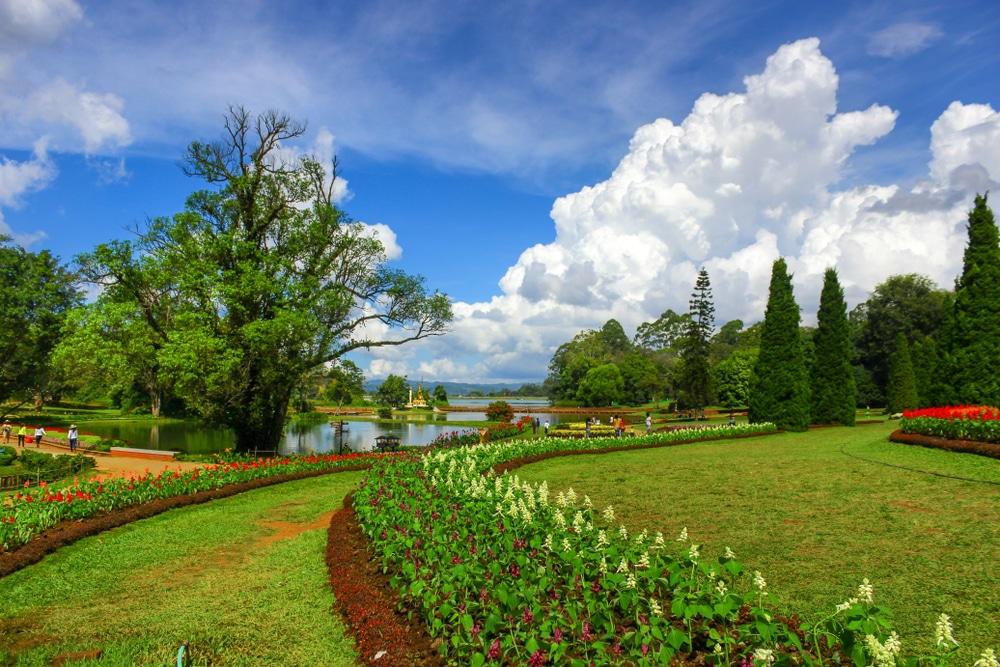 jardin botanique de Kandawgyi, Birmanie